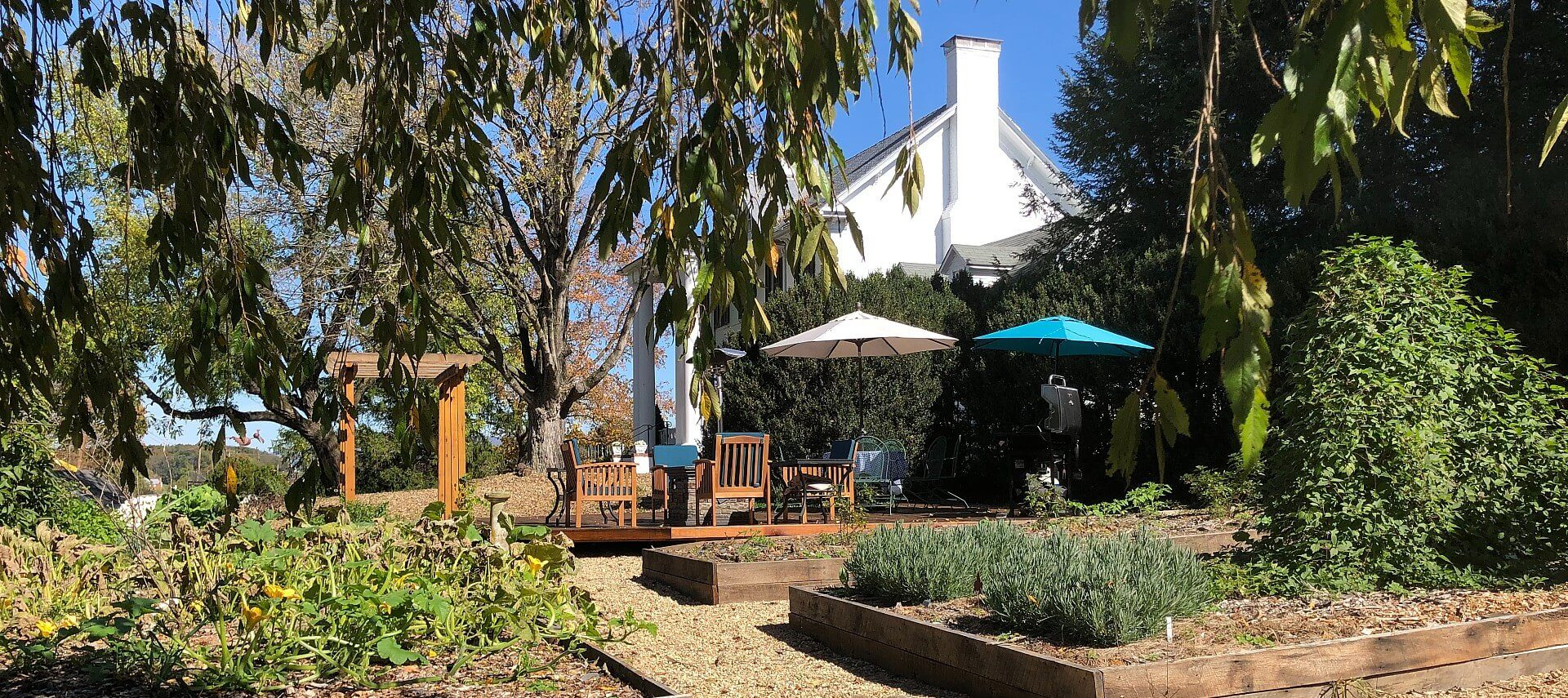 Expansive outdoor patio with pergola and deck with table and chairs and two umbrellas